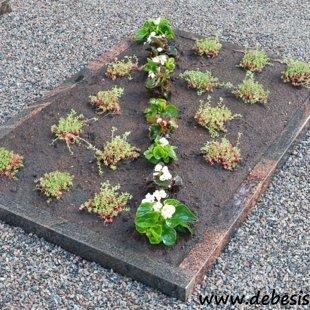 14. Apzaļumota granīta kapu apmalīte