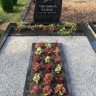 20. Granīta kapu apmale ar apstādījumu